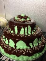 Andes Mint Chocolate Chip Cake by Xilent-Strawberry