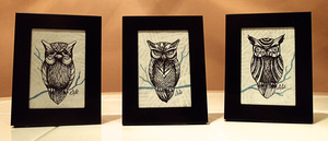 Owls by TrollcreaK