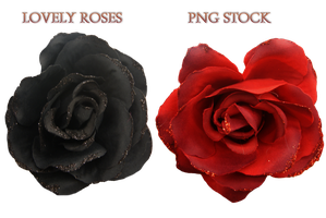 Lovely Roses     Png Stock by KarahRobinson-Art