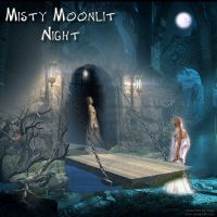 MISTY MOONLIGHT by HumbleLuv