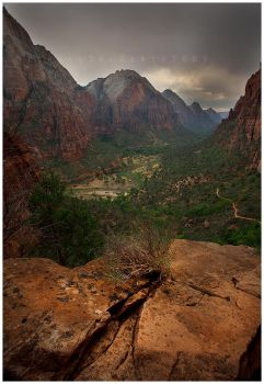 a Storm in Zion by michael-dalberti