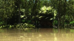 Rainforest by Andywong75