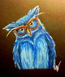 Wandering Owl by cayfie