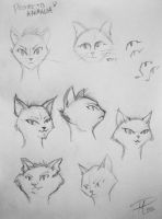 Heads Sketches by MPaolillo