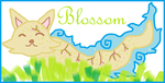 Blossom by ILoveCockatiels