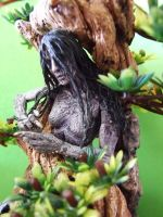 Dryad by tommy-tommerson