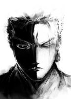 silent zoro by Luminoz
