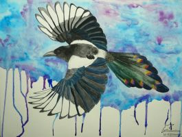 Corvid queen by Woodswallow