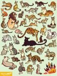 WILD CATS by mofuwa