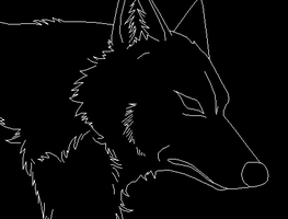 Emotionless Wolf Template by DemonicFury