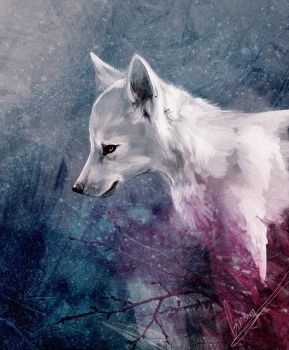 white Fang 2 by Ginseng-fox