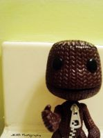 Little Big Planet by JustEatMyApple