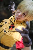 Hellsing: Attack Mode by StormWildcat