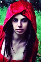 Red riding hood by awolfattehdoor