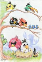 ANGRY BIRDS by Kanis-Major