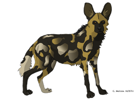 African Wild Dog by WooflesArt