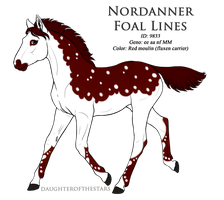 9833 - Nordanner Foal Design by Ikiuni