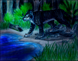 Tigers Night by Tesseri-Shira