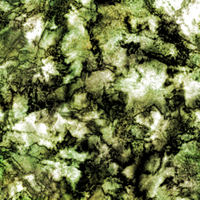 Forest Floor Texture by olafthemediocre