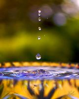 Drops by andy1349