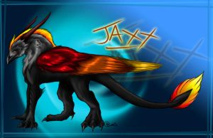 Jaxx 2007 by NorthSkyThunder