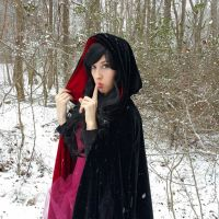 Enchantress of the Winter Woods Stock 8 by enchanted-raven