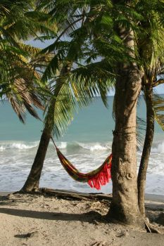 Beach Hammock 15442 by StockProject1
