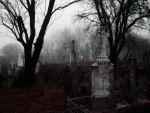 Purple Cemetery by CaterinaMedicis