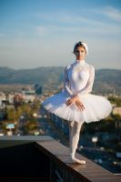 the black swan in white by zzero777