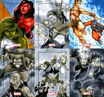 Marvel Heroes and Villains 05 by RichardCox