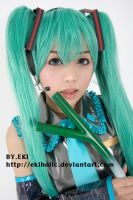 VOCALOID - MIKU 004 by ekiholic