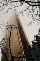 Tree, Tower, Mist II by lux-ad-artem