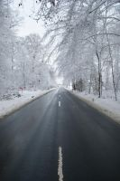 Snowscape Stock 82 by Sed-rah-Stock