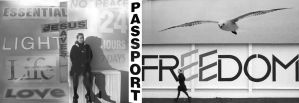 Passport by theodamus
