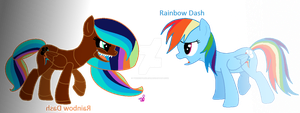 Hsad Wodniar and Rainbow Dash by TwizicSparkle30