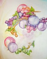 Fruit and Flowers by damphyr