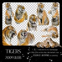 TIGERS_9P by its-a-nice-day