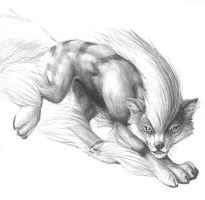 pencil arcanine by hibbary
