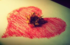 Dead flower of my heart.. by thezgi