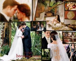 The Twilight Saga Breaking Dawn part 1 by Maysa2010