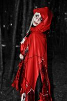 American Mcgee's Little Red Riding Hood by TsukiOkamiLiddell