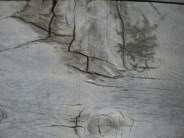 Wood Texture 1 by MrHighsky