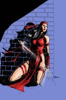 ELEKTRA IN COLOR by pfab