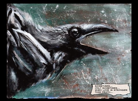 CROW by htx