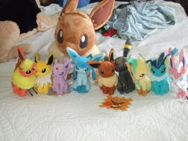 My Newest Eevee Stuff by Itachislilgirl