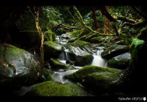 Nichols Creek 2 by shadowfoxcreative