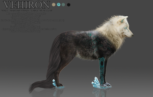 COM: Vehrion Reference Sheet by zeni-graphics