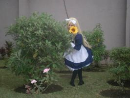 Belarus_A sunflower for you by Acilegna27