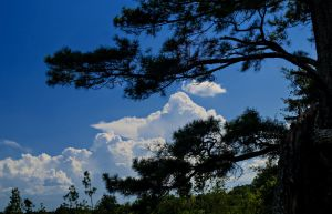 Clouds by drhine