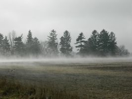 Out of the Mist II by josiahherman